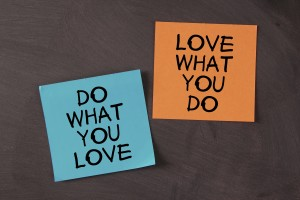 Love What You Do and Do What You Love